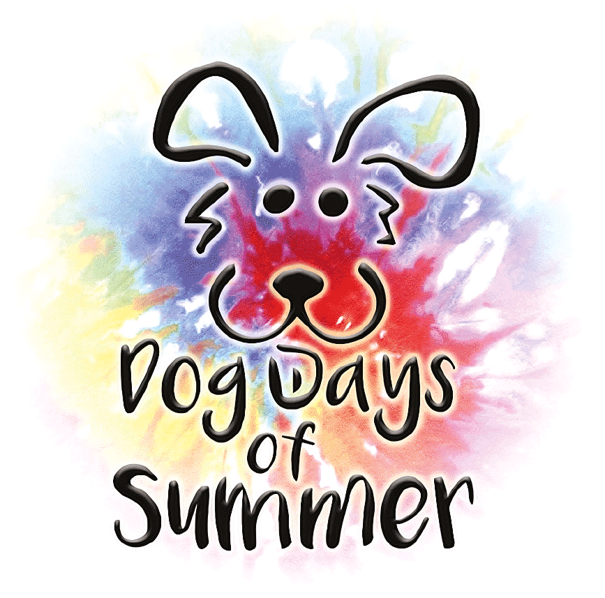 Dog Days of Summer Festival in downtown Kent Ohio