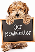 Newsletter Archive Link